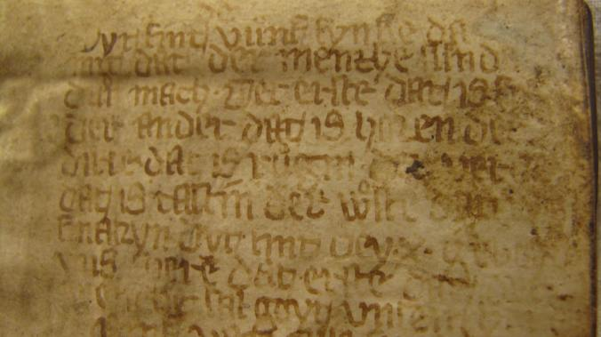 Figure 3, Auckland Libraries, Sir George Grey Special Collections, Med. MS G.140, lower endleaf, vernacular text on senses.